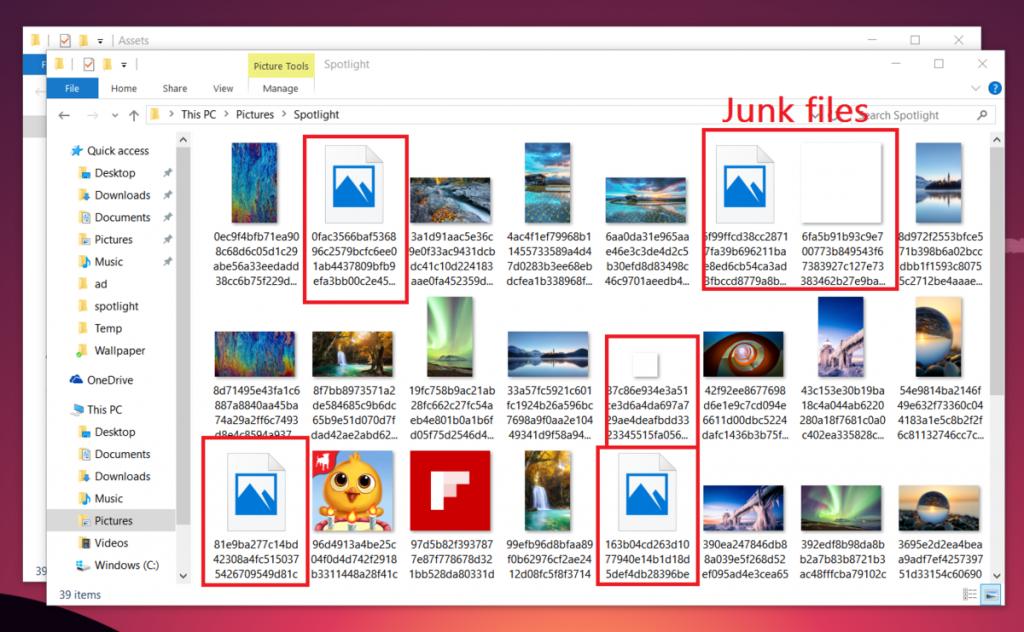 Junk Files